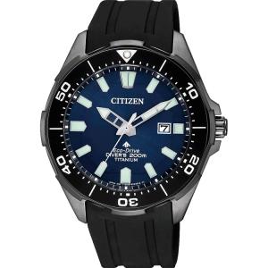 Citizen Promaster Eco-Drive BN0205-10L Uhrenarmband 22mm